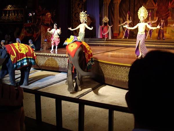 0306東芭樂園之大象助陣.JPG