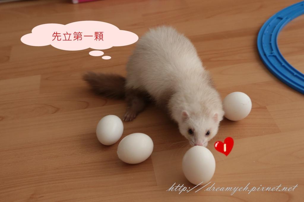 香香立蛋記03