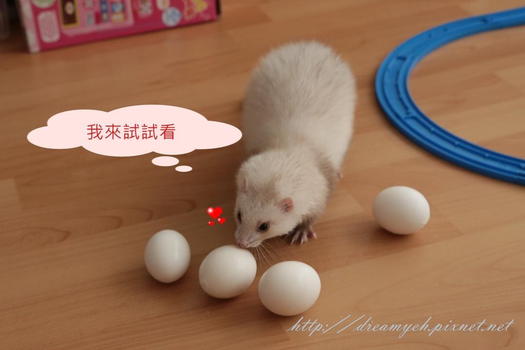 香香立蛋記02
