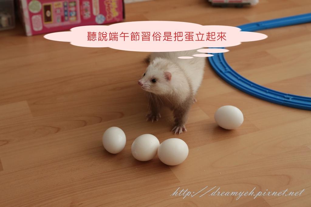 香香立蛋記01