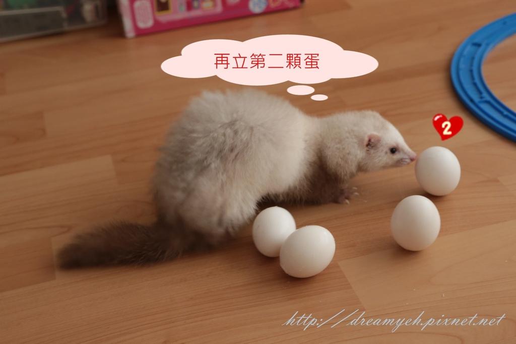 香香立蛋記04
