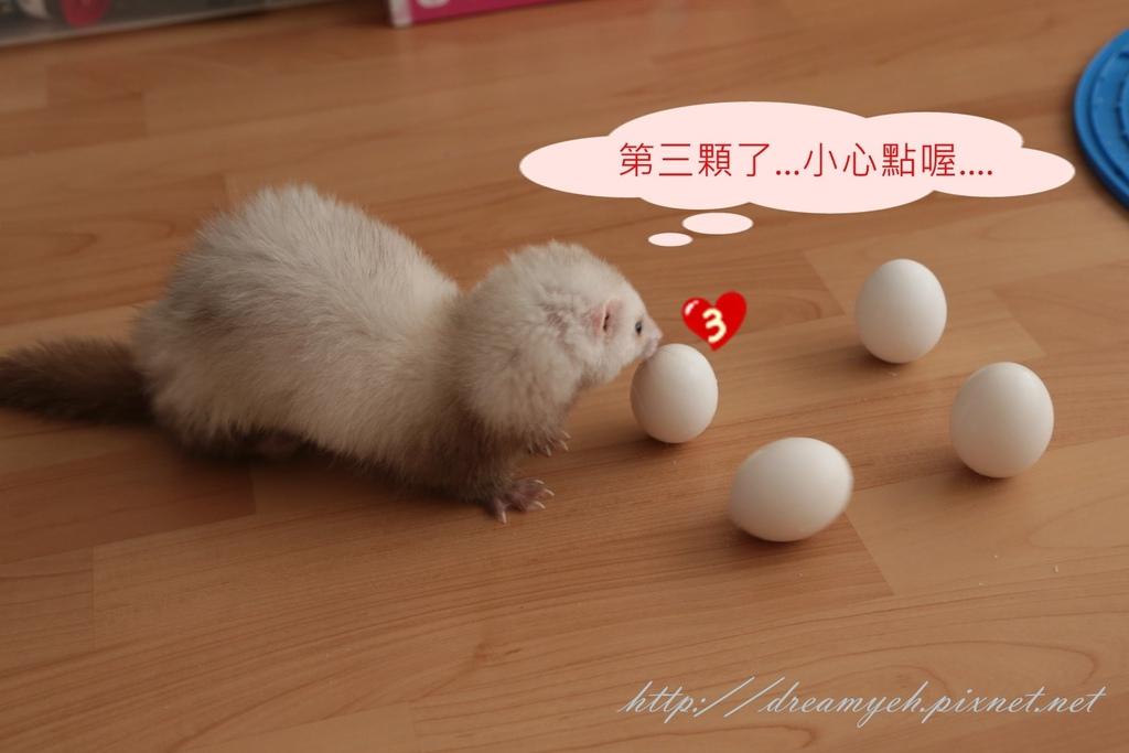 香香立蛋記05