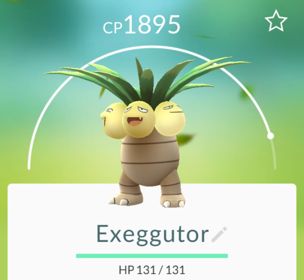 椰蛋樹.png