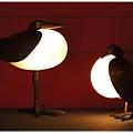 水鳥燈 鴿子燈.JPG