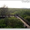 新豐紅樹林01