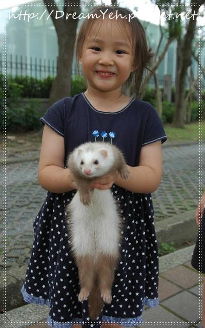 24貂‧小女孩與貂.JPG