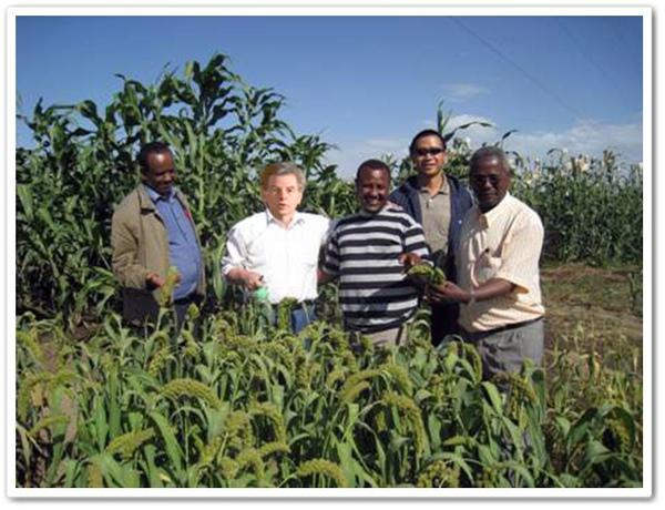 威廉伯爵與非洲農業不發達