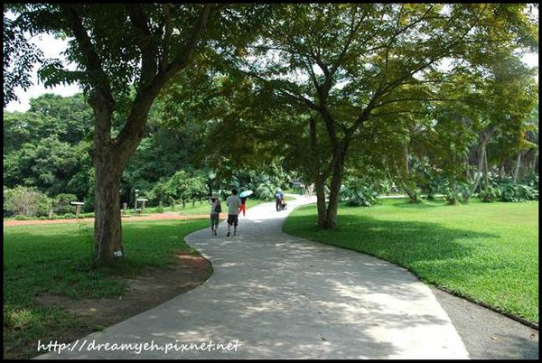 漫步綠世界