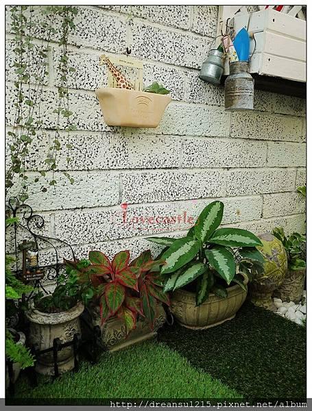 1號小花園(2013)-4