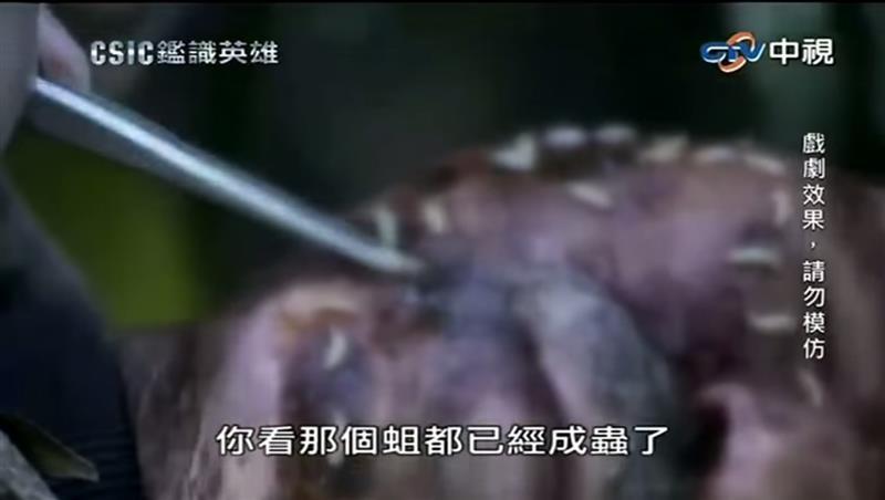 鑑識英雄11.jpg