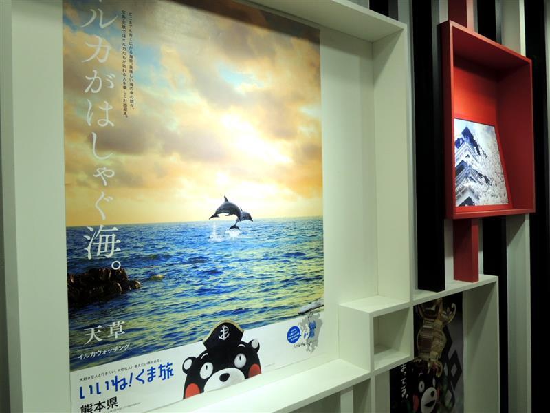 熊本熊 咖啡011.jpg