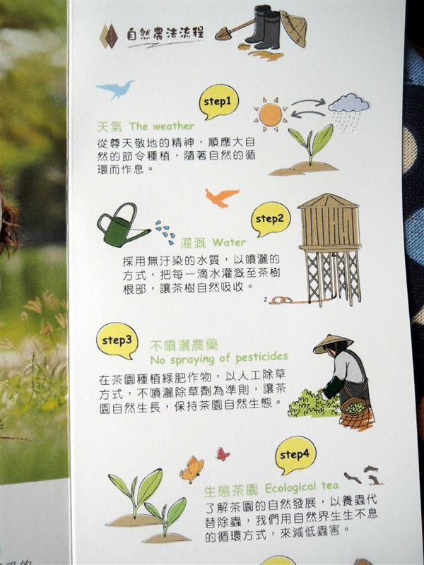 the' vie 玉蘭花烏龍茶 022.jpg