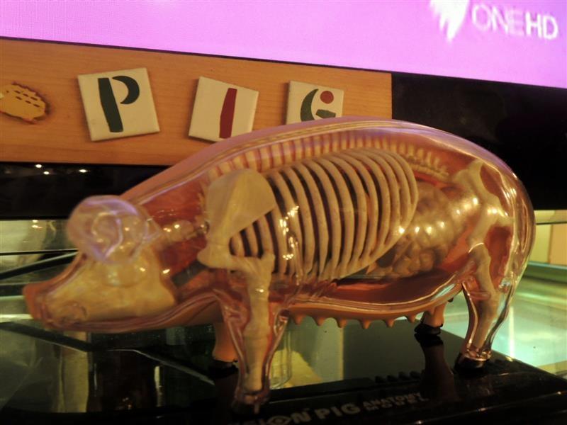 豬跳舞小餐館 037.jpg