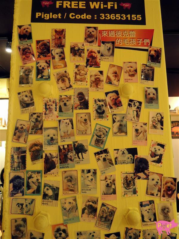 Piglet friendly cafe 彼克蕾友善咖啡館 016.jpg