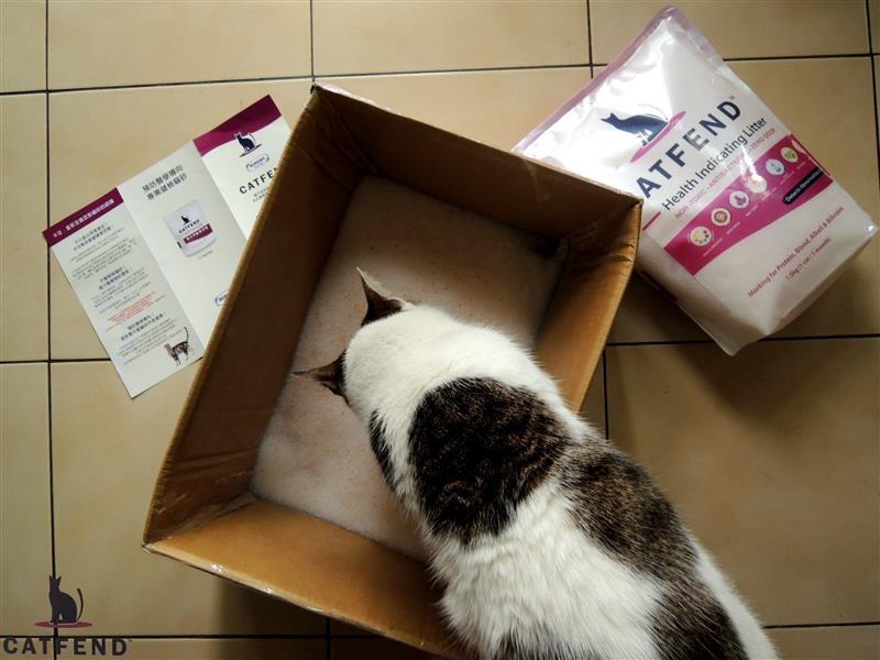 catfend 卡芬魔幻貓砂 033.jpg