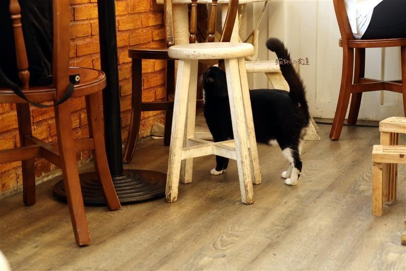 貓咪先生的朋友 064.jpg