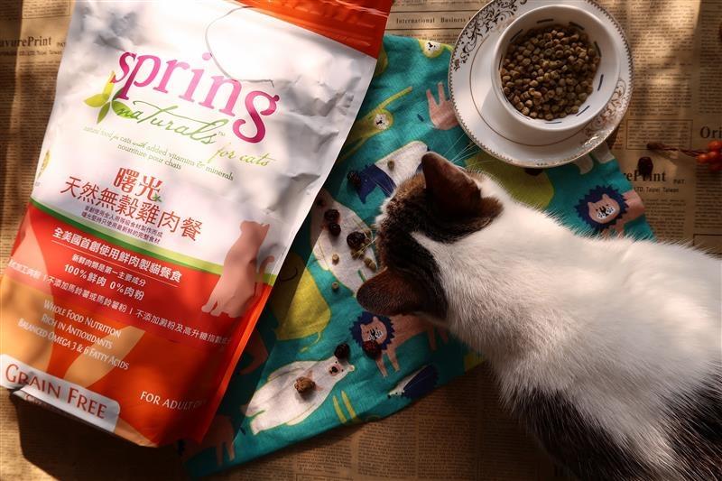 Spring Natural 曙光天然寵物餐食 016.jpg