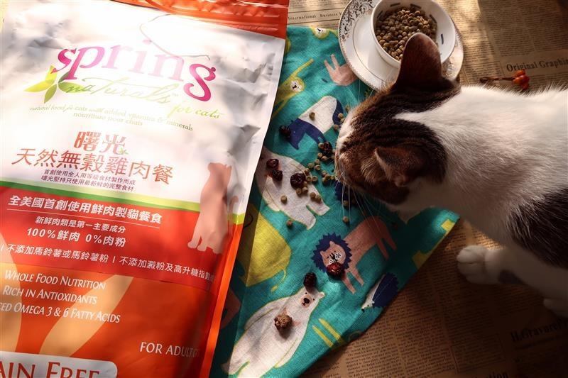 Spring Natural 曙光天然寵物餐食 022.jpg
