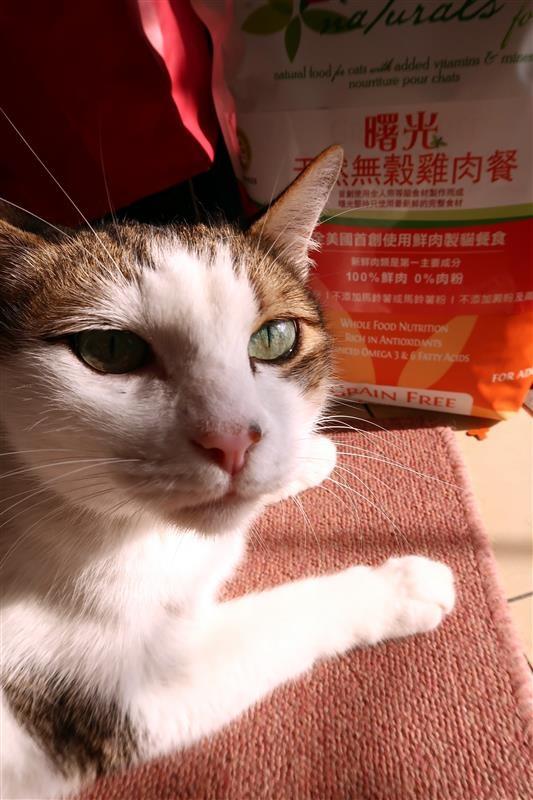 Spring Natural 曙光天然寵物餐食 025.jpg