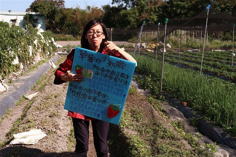 台北 採草莓 北大 011.jpg