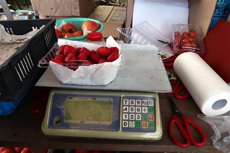台北 採草莓 北大 030.jpg