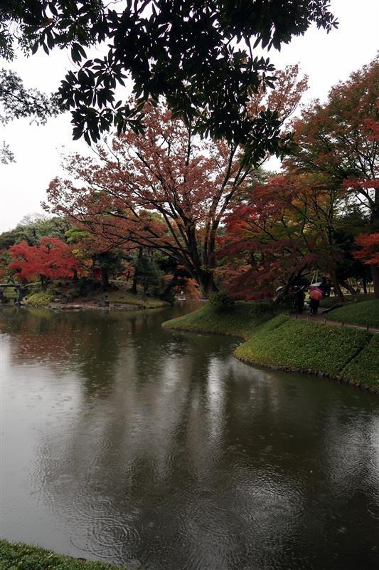 東京賞楓 小石川後樂園 037.jpg