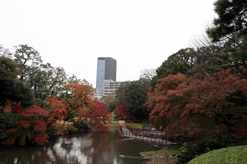 東京賞楓 小石川後樂園 040.jpg