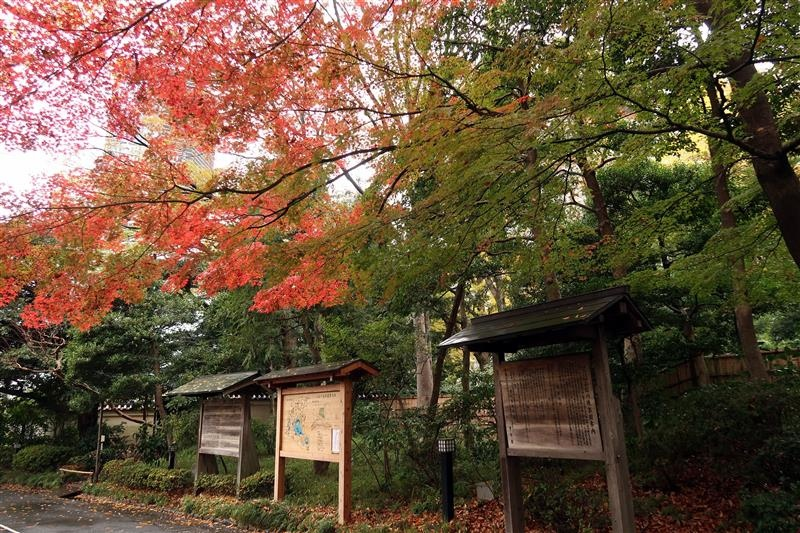 東京賞楓 小石川後樂園 047.jpg