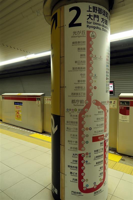 東京銀杏 日比谷公園 001.jpg
