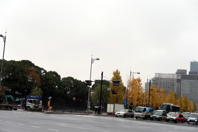 東京銀杏 日比谷公園 003.jpg