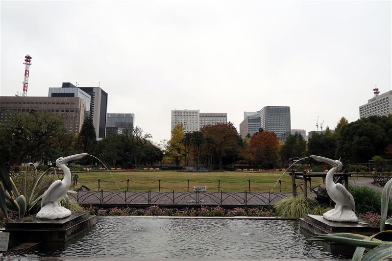 東京銀杏 日比谷公園 006.jpg