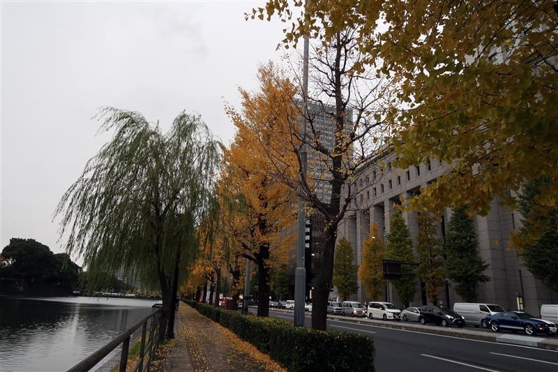 東京銀杏 日比谷公園 022.jpg