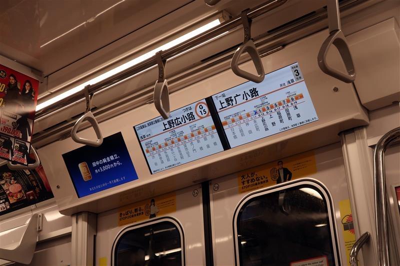 東京賞楓 銀杏 013.jpg