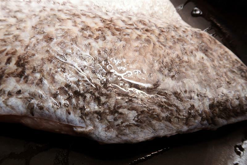 漁季水產 kitty 保冷袋 冷凍鮭魚水產 011.jpg