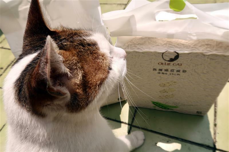 OLLIE CAT 真纖細豆腐砂豌豆砂 貓砂 馬桶 017.jpg