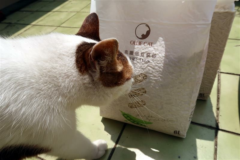 OLLIE CAT 真纖細豆腐砂豌豆砂 貓砂 馬桶 012.jpg