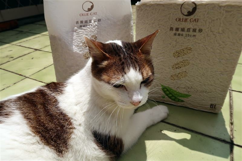 OLLIE CAT 真纖細豆腐砂豌豆砂 貓砂 馬桶 019.jpg