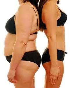 體脂與體重