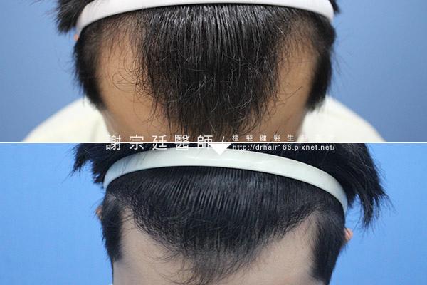 hair012.jpg