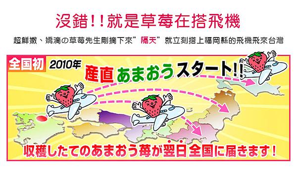心型草莓台北濱江-2