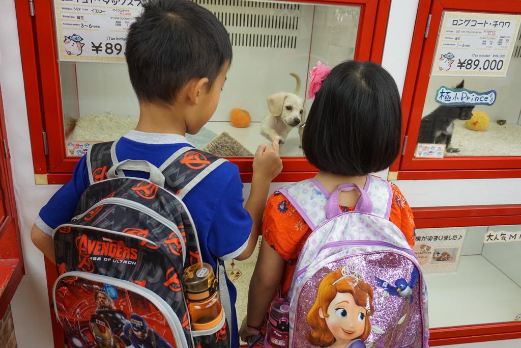 在替爸媽省旭川動物園的門票是吧.JPG