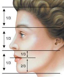 nose-2.jpg