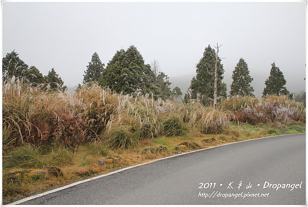 IMG_5431_1.JPG