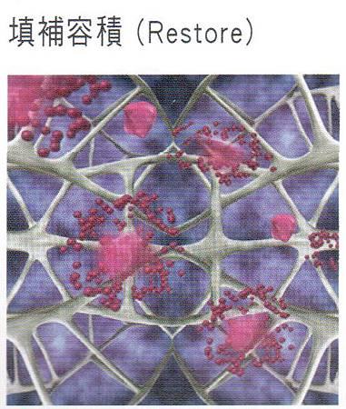 3D聚左旋乳酸2.jpg