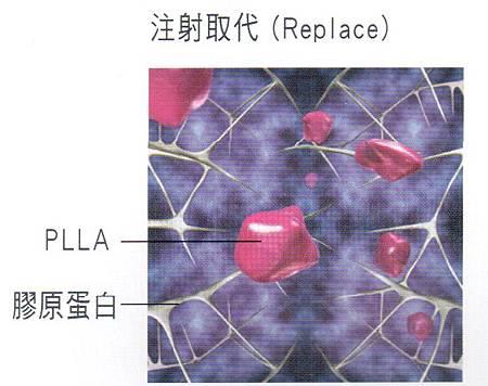 3D聚左旋乳酸1.jpg