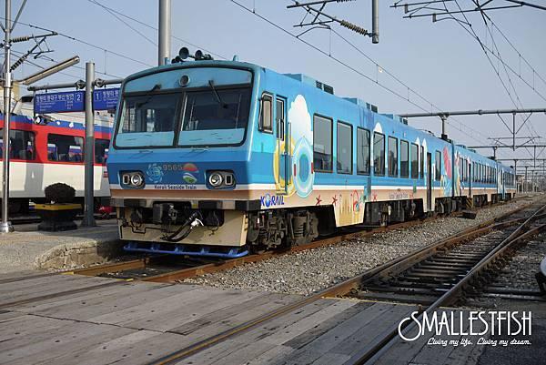 P1260847a.jpg