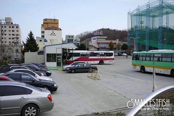 P1270031a.jpg