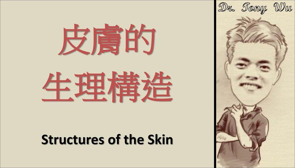 皮膚的生理構造_00 標題 v2016-07-08