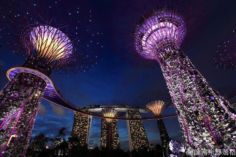 Singapore_02_486.jpg