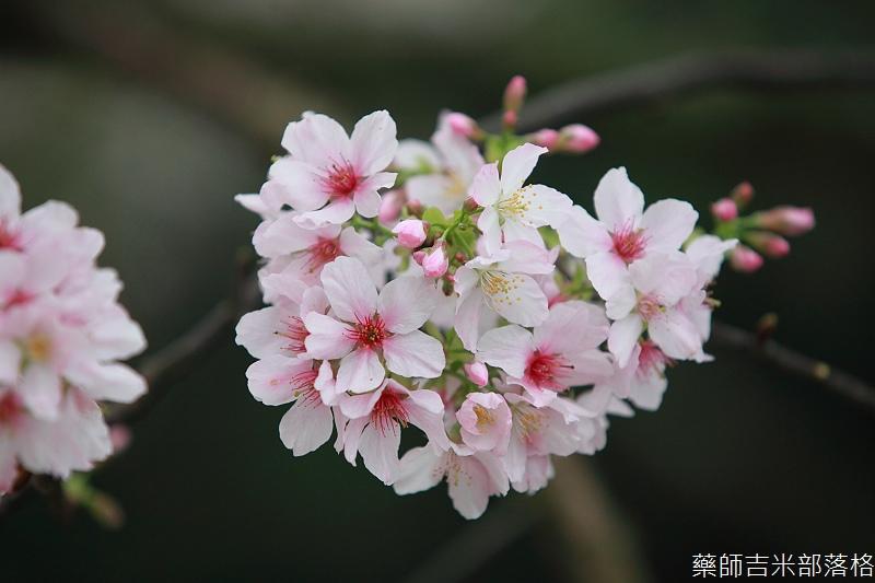 9903_Taipei_133.jpg